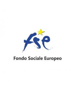 fse(1)